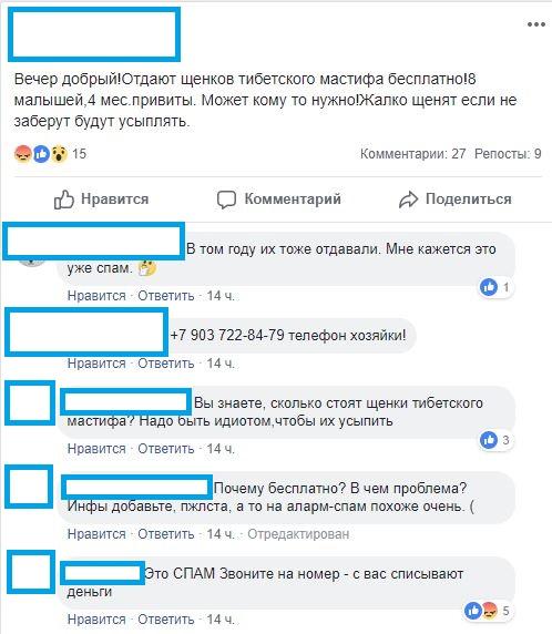 """""""Отдают щенков тибетского мастифа бесплатно!"""""""