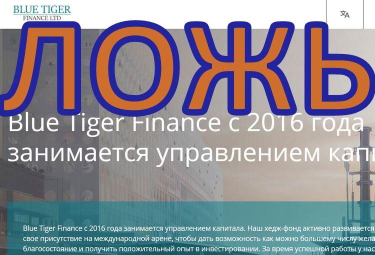Blue Tiger Finance: отзыв сотрудника о лохотроне