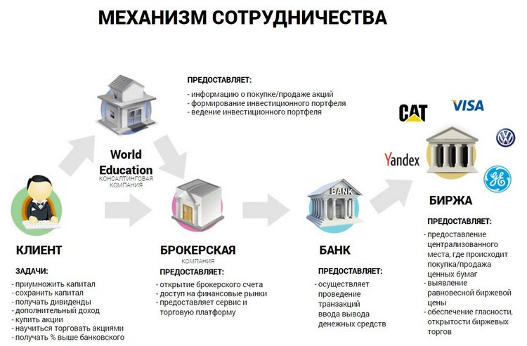 World Education, financepiter, FirstOneStep: не связывайтесь, аферисты